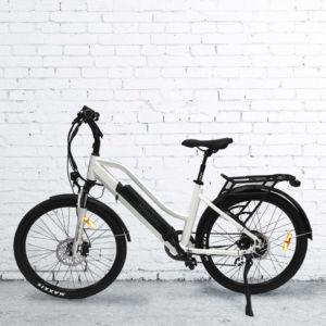 Rangler Ebike Electric Trail Bike Hikobike New Zealand